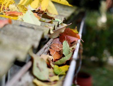 7 raisons pour lesquelles vous avez besoin d'un nettoyage de gouttière à l'automne